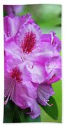 Purple Spring 15 Bath Towel