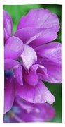 Purple Tulip Blossom With Dew Drops On The Petals Bath Towel
