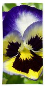 Purple White And Yellow Pansy Bath Towel