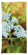 Queen Anne's Lace Hand Towel
