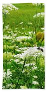 Queen Anne's Lace Bath Towel