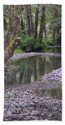 Quinault Rain Forest 3147 Bath Towel