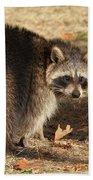 Raccoon #4 Bath Towel