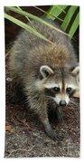Raccoon Bandit Bath Towel