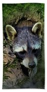 Raccoon In A Log Hand Towel