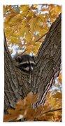 Raccoon Nape Bath Towel