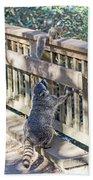 Raccoon Shenanigans Bath Towel