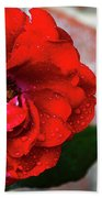 Rain Covered Red Rose Bath Towel
