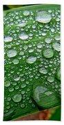 Rain Drops Bath Towel