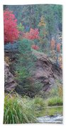 Rainbow Of The Season With River Bath Towel