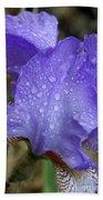 Rainy Day Iris Bath Towel