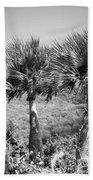 Rare Palm Trees Curacao Bath Towel