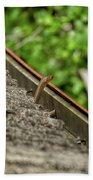 Rat Snake Hand Towel