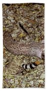 Rattlesnake Devouring Rabbit Bath Towel