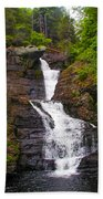Raymondskill Falls Bath Towel