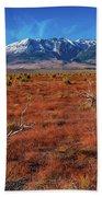 Read Fields Eastern Sierra Bath Towel
