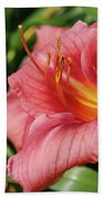 Really Pretty Blooming Pink Daylily In A Garden Bath Towel