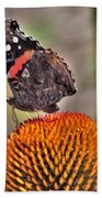 Red Admiral Butterfly On Coneflower              July              Indiana Bath Towel