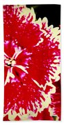Red And White Mum Bath Towel