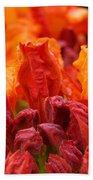 Red Azaleas Orange Azalea Flowers 9 Floral Giclee Art Prints Baslee Troutman Bath Towel