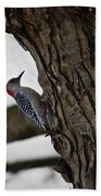 Red Bellied Woodpecker No 2 Bath Towel