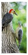 Red-bellied Woodpeckers Hand Towel