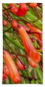 Red Blossoms Of A Firecracker Plant Bath Towel