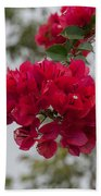 red bougainvillea in Laguna Guerrero Bath Towel