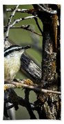 Red-breasted Nuthatch Bath Towel