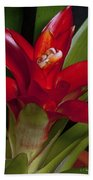 Red Bromiliad Bath Towel