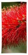 Red Burst Bath Towel by Valeria Donaldson