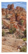 Red Canyon Trail Bath Towel