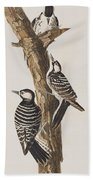 Red-cockaded Woodpecker Hand Towel