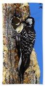 Red Cockaded Woodpecker Mother Feeding Bath Towel