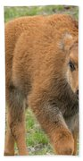 Red Dog Bison In Yellowstone Bath Towel