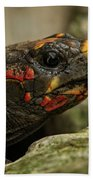Red-footed Tortoise Bath Towel