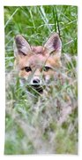 Red Fox Baby Hiding Bath Towel