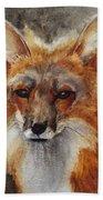 Red Fox Bath Towel