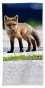 Red Fox Kit On Road Bath Towel