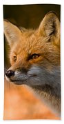 Red Fox Pictures 118 Bath Towel