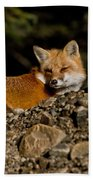Red Fox Pictures 126 Bath Towel