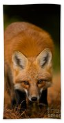 Red Fox Pictures 161 Bath Towel