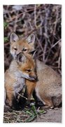 Red Fox Pictures 65 Bath Towel