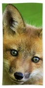Red Fox Pup Bath Towel