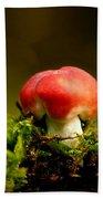 Red Fungus Bath Towel
