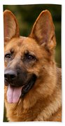 Red German Shepherd Dog Bath Towel