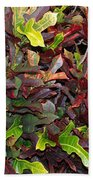 Red Green Leaves Bath Towel