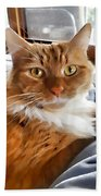 Red-haired Kitten Bath Towel