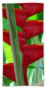 Red Heliconia Bath Towel
