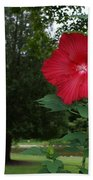 Red Hibiscus Highlights A Scene On The River Bath Towel